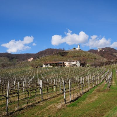 Le colline del Prosecco (ph. Germana Cabrelle)