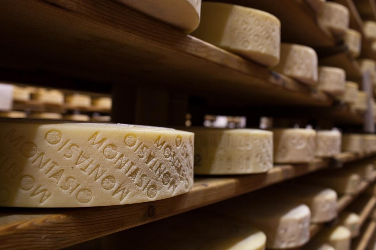 formaggio montanasio friuli