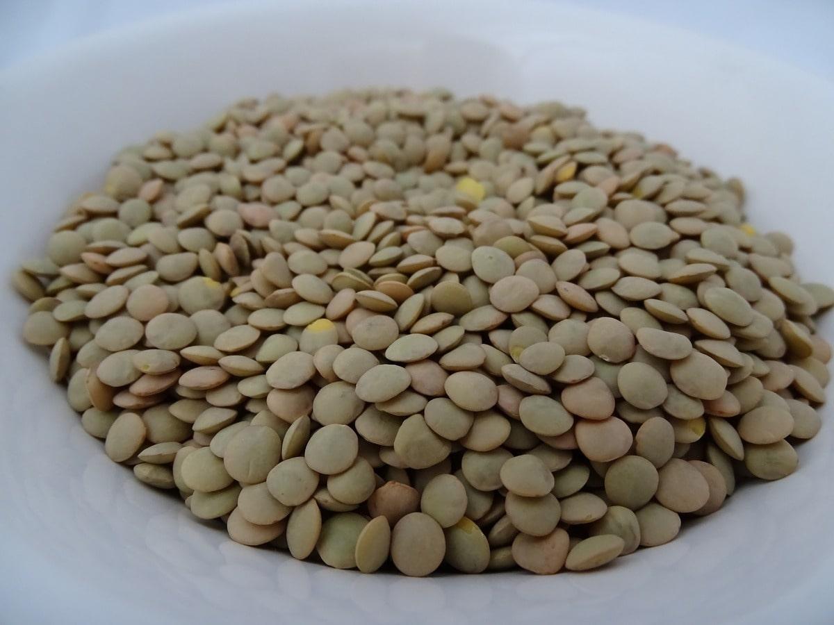 lenticchie enogastronomia viterbese